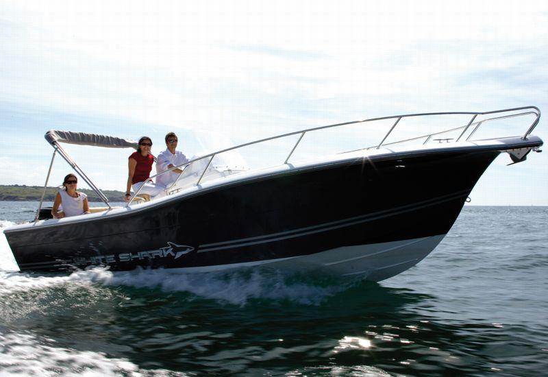 bateau white shark